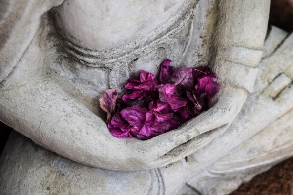 Yoga ~ Salud y Equilibrio